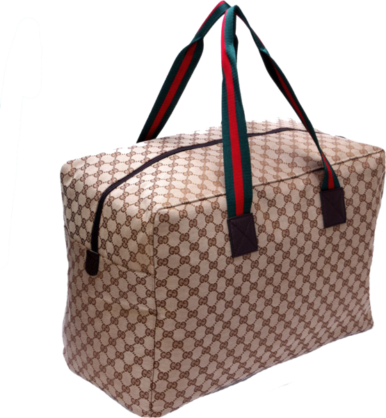 Gucci Bag Transparent